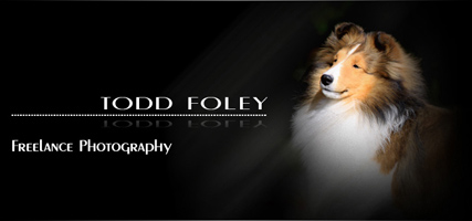 Todd Foley Photography