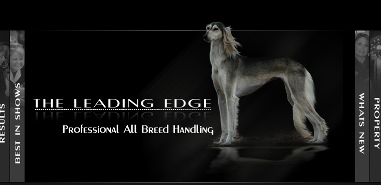 The Leading Edge - All Breed Professional Dog Handling